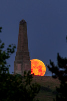 Strawberry Moon at Culver Down